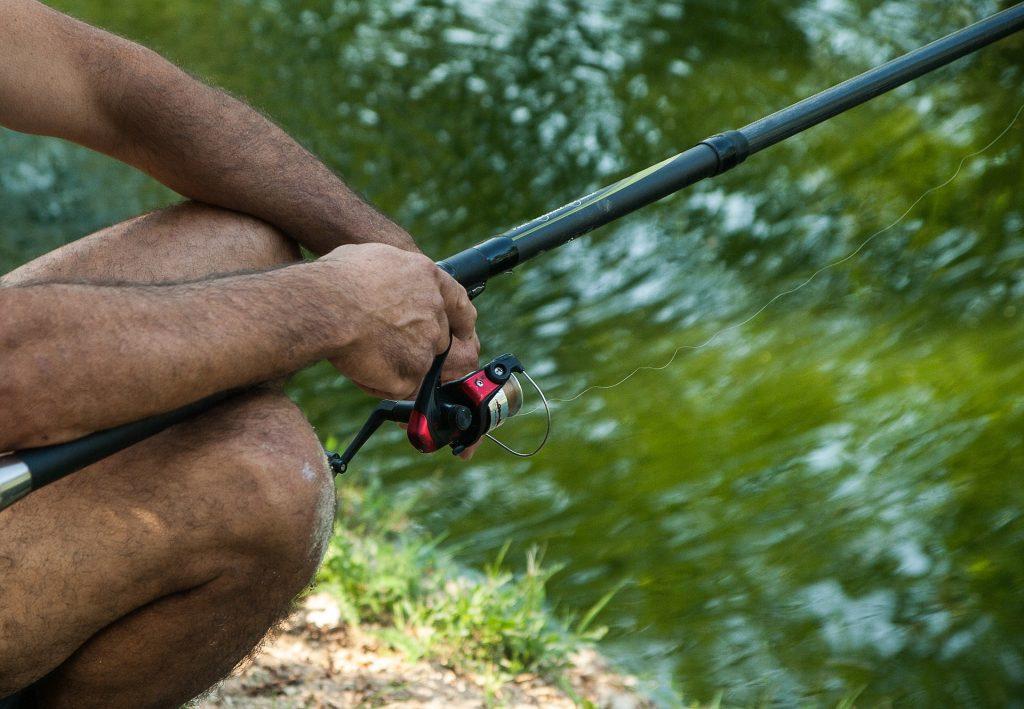 ナマズ釣り スピニングリール